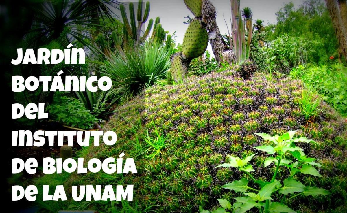 Jard n bot nico del instituto de biolog a de la unam for Programacion jardin botanico