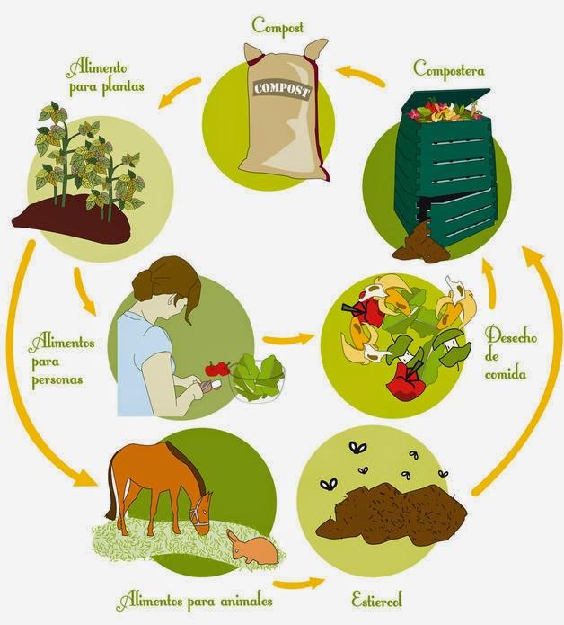 Afrika las plantas los parásitos